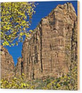 Mountain Cliffs At Zion Wood Print