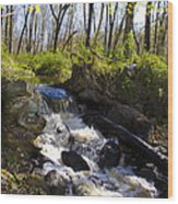 Mountain Creek In Spring Wood Print