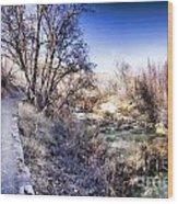 Mountain Creek Path-sundance Utah Wood Print
