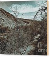 Mountain Creek Path-sundance Utah V3 Wood Print