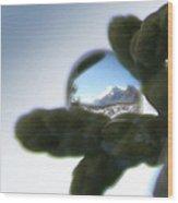 Mountain Dew Drop Wood Print