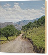 Mountain Dirt Road In Northern Crete Wood Print