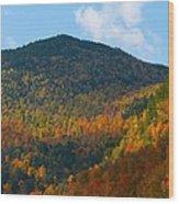 Mountain Fall Wood Print
