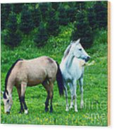 Mountain Horses Grazing  Wood Print