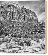 Mountain In Winter - Bw Wood Print