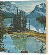 Mountain Island Sanctuary Wood Print