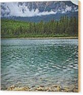 Mountain Lake Wood Print by Elena Elisseeva