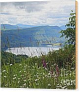 Mountain Lake Viewpoint Wood Print by Carol Groenen