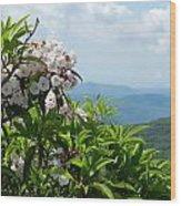 Mountain Laurel Wood Print