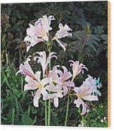 Mountain Lillies Wood Print