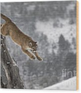 Mountain Lion - Silent Escape Wood Print by Wildlife Fine Art