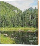 Mountain Marsh Wood Print