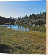 Mountain Marshes 1 Wood Print