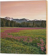 Mountain Meadow Color Wood Print
