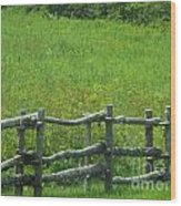Mountain Meadow New York Hwy 30 Wood Print