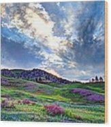 Mountain Meadow Of Flowers Wood Print