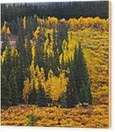 Mountain Meadows Wood Print