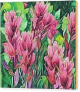 Mountain Meadows' Paintbrush Wood Print