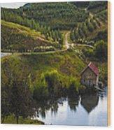 Mountain Orchard Wood Print