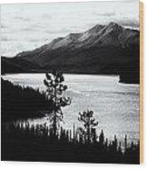 Mountain Outline Wood Print