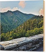 Mountain Overlook Wood Print