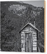 Mountain Privy Bw Wood Print