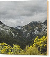 Mountain Rain Wood Print