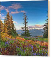 Mountain Rainier  Sunset Wood Print by Emmanuel Panagiotakis