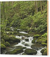 Mountain Rapids Wood Print by Andrew Soundarajan