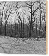 Mountain Road Wood Print