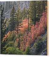 Mountain Side Colors Wood Print