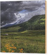 Mountain Storm Wood Print