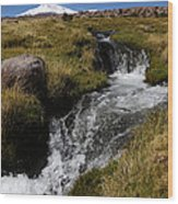 Mountain Stream And Guallatiri Volcano Wood Print