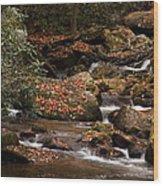 Mountain Stream Wood Print by Cindy Rubin