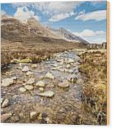 Mountain Stream From Beinn Eighe Wood Print