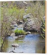 Mountain Stream In Castlewood Canyon State Park Wood Print