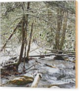 Mountain Stream In Winter Wood Print