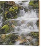 Mountain Stream Wood Print