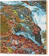 Mountain Stream Waterfall Autumn Wood Print