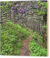 Mountain Trail With Catawba Rhododendron Wood Print