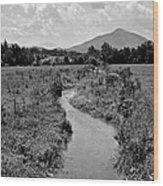 Mountain Valley Stream Wood Print
