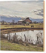 Mountain View Barn Wood Print by Heather Applegate