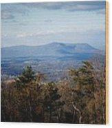 Mountain Vista II Wood Print