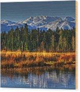 Mountain Vista Wood Print by Randy Hall