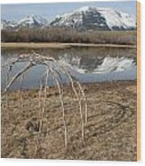 Aboriginal Sacred Sweat Lodge - Waterton Lakes Nat. Park, Alberta Wood Print
