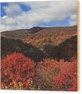 Mountains At Graveyard Fields Wood Print