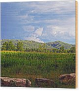 Mountains Corn And Blue Skies Wood Print