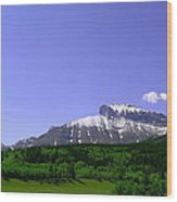 Mountains Crowsnest Wood Print