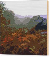 Mountains Wood Print