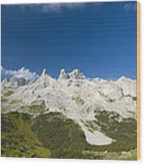 Mountains In The Alps Wood Print